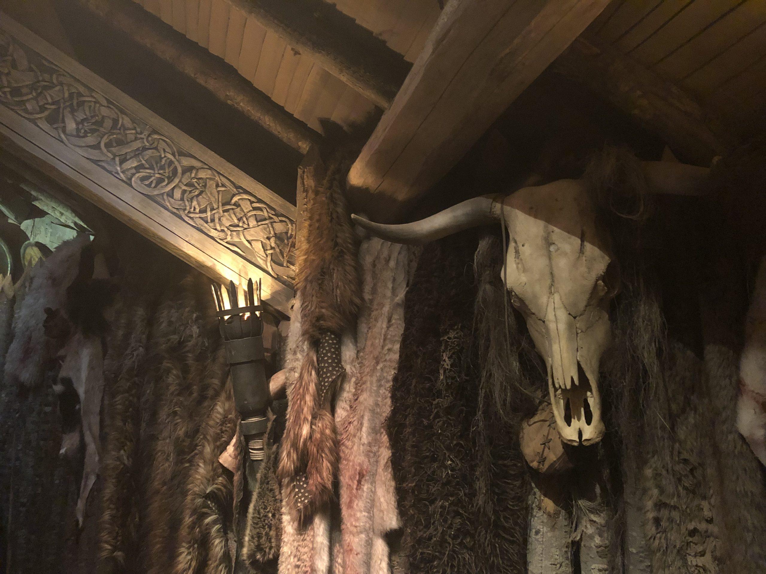 accessoires décor puy du fou, faux crane de vache par moulage d'un vrai, tirage en résine