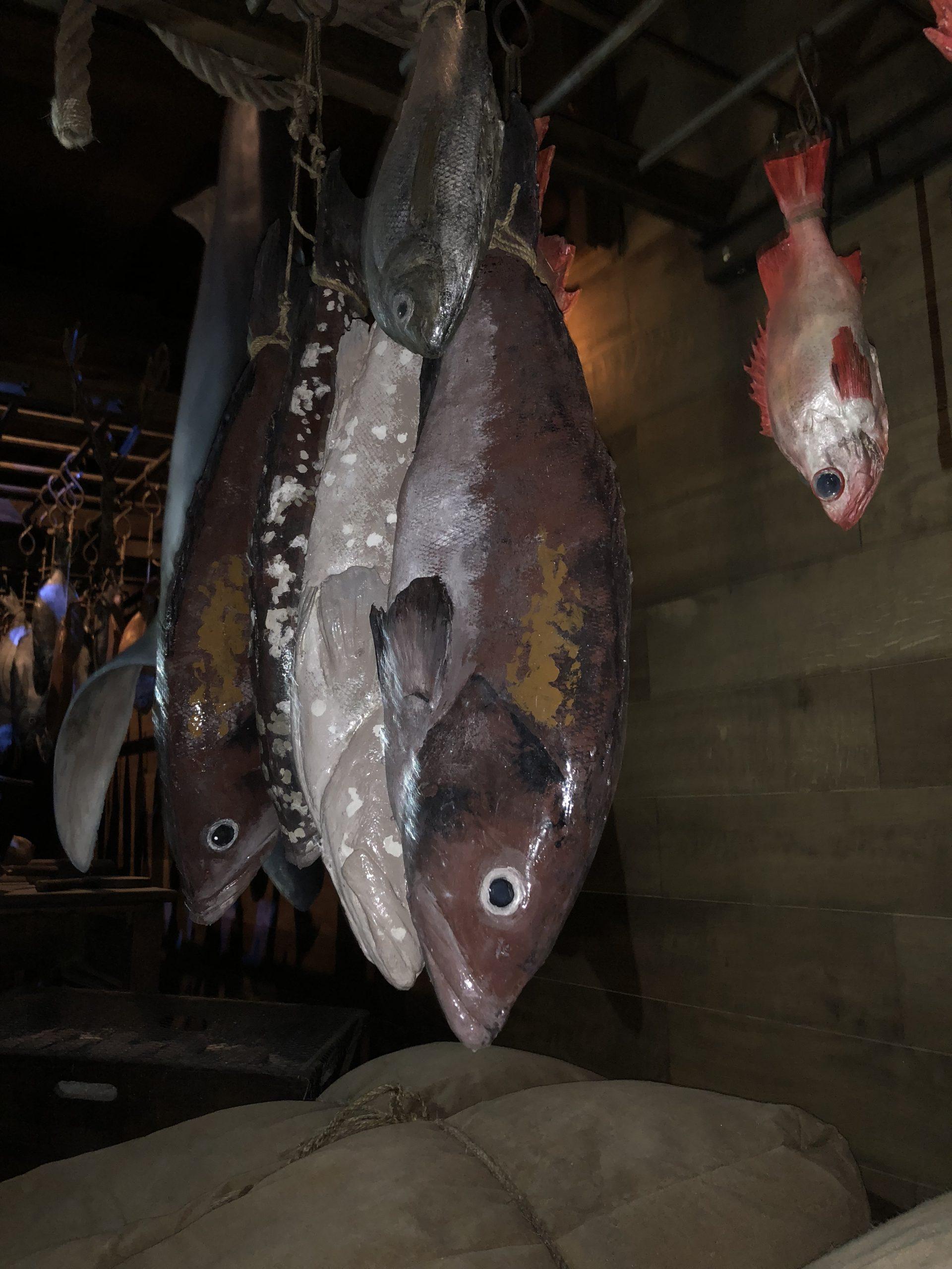 faux poissons, mérous, sébastes, dorades, éléments factices pour le puy du fou