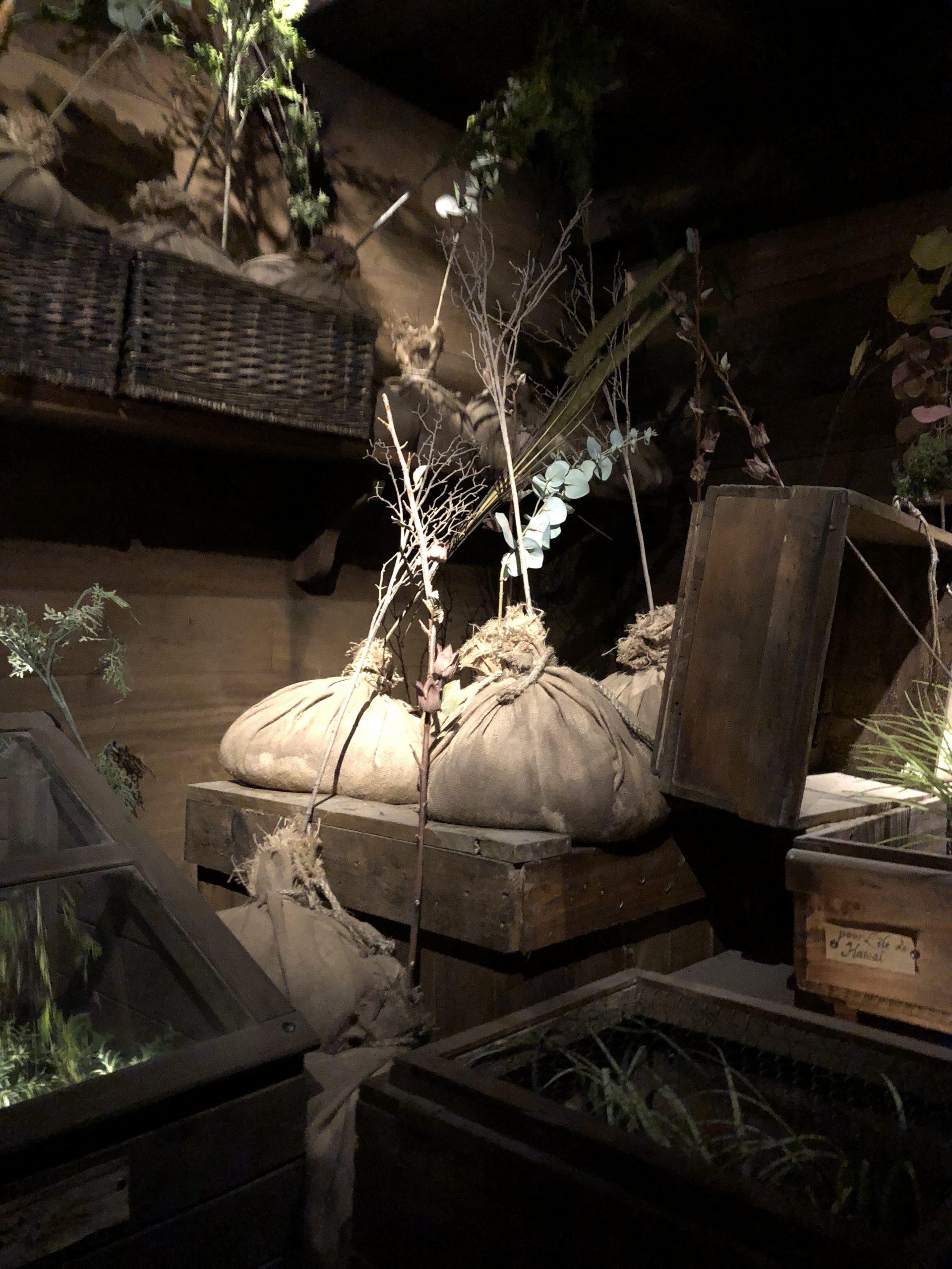 ballot en toile pour le transport de specimen de plantes, accessoires décor puy du fou