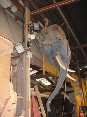 tête d'éléphant suspendu dans l'atelier.